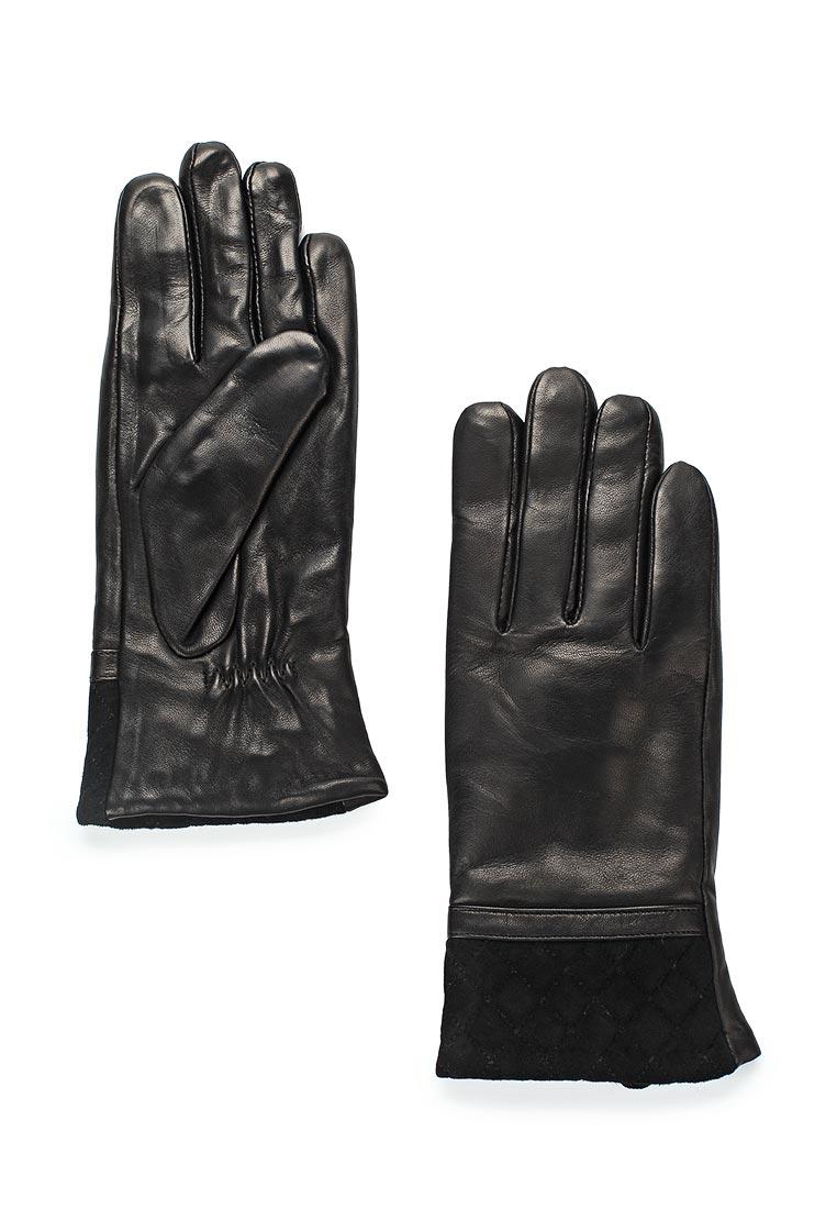 Женские перчатки Vitacci (Витачи) ZF033