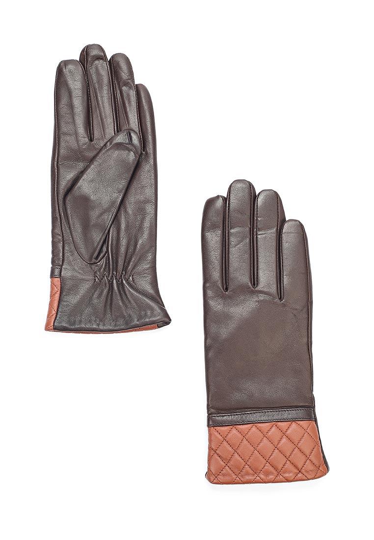 Женские перчатки Vitacci (Витачи) ZF034