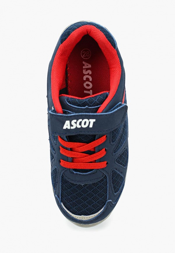 Кроссовки для девочки Ascot SJ 244 Eagle Фото 4