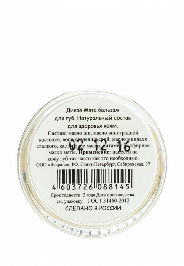 Бальзам Levrana для губ Дикая Мята, 10 гр