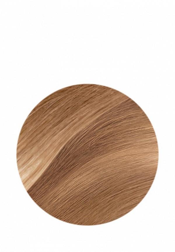 Краска для волос LOreal Paris Casting Creme Gloss 8031 Cветло-русо-золотисто-пепельный
