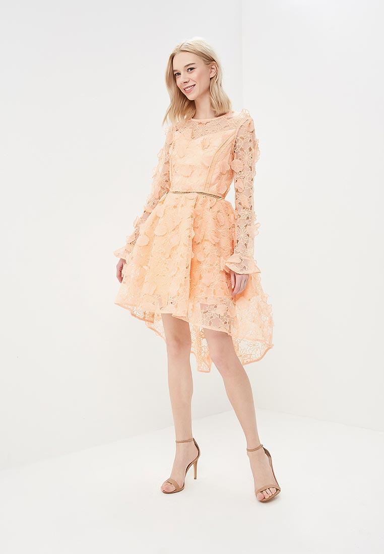 Вечернее / коктейльное платье True Decadence HS0800